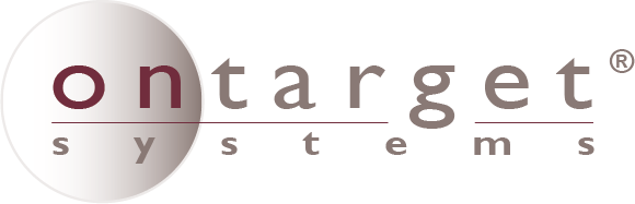 Ontarget Systems – Construction Consulting and Loan